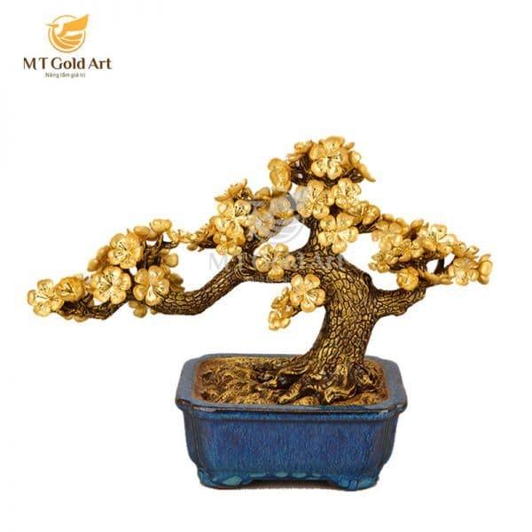 chậu cây bonsai phong thủy
